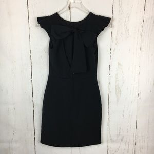 Zara | Ruffle Sleeve Dress